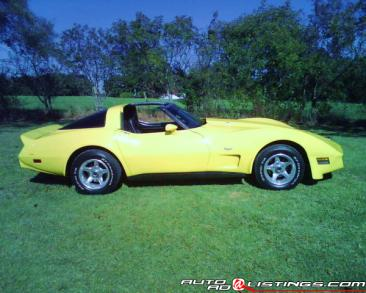 1979 Chevrolet Corvette Coupe for sale